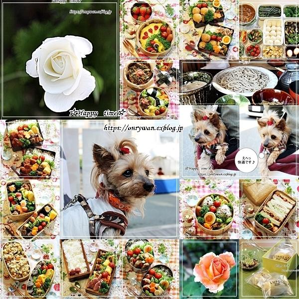 2018・お弁当まとめ5月~8月・今日のリク♪_f0348032_21401711.jpg
