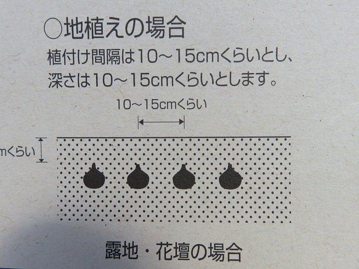 b0341140_2104467.jpg