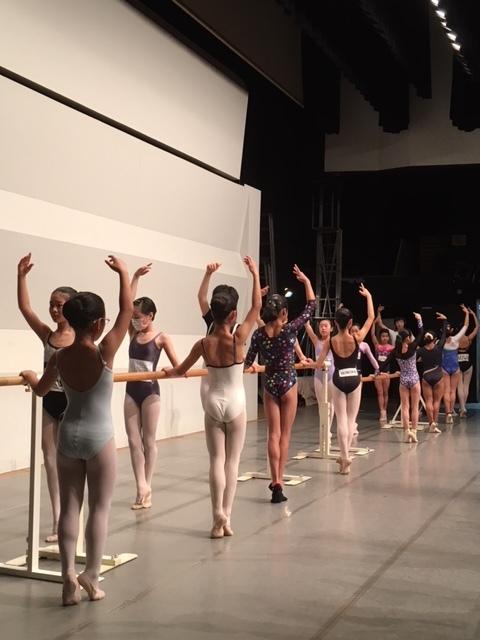春のバレエセミナー IN NAGOYA 2019 のご案内_d0132565_14572721.jpg