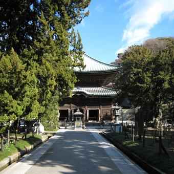 日向別邸と国宝・正福寺との関係_c0195909_12073048.jpg