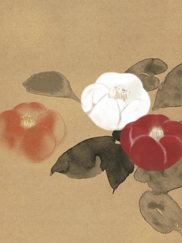 椿の季節_a0197730_04013887.jpg