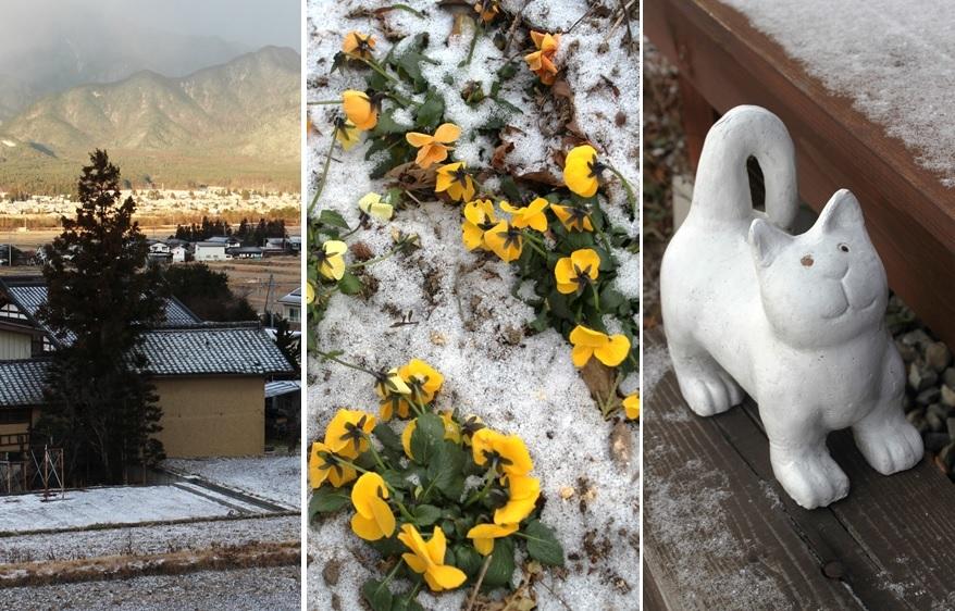 雪が少し降りました_a0212730_11203333.jpg