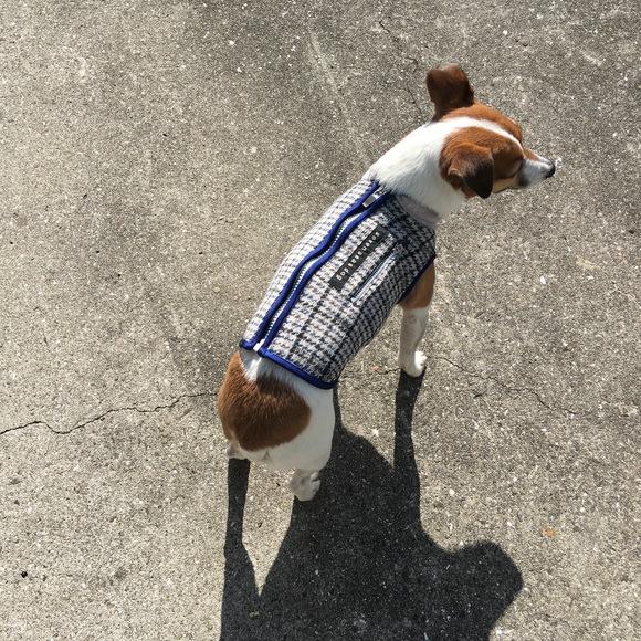 seven seas dog raising fleece  jacket 超起毛 フリース ドッグジャケット_d0217958_13204439.jpg