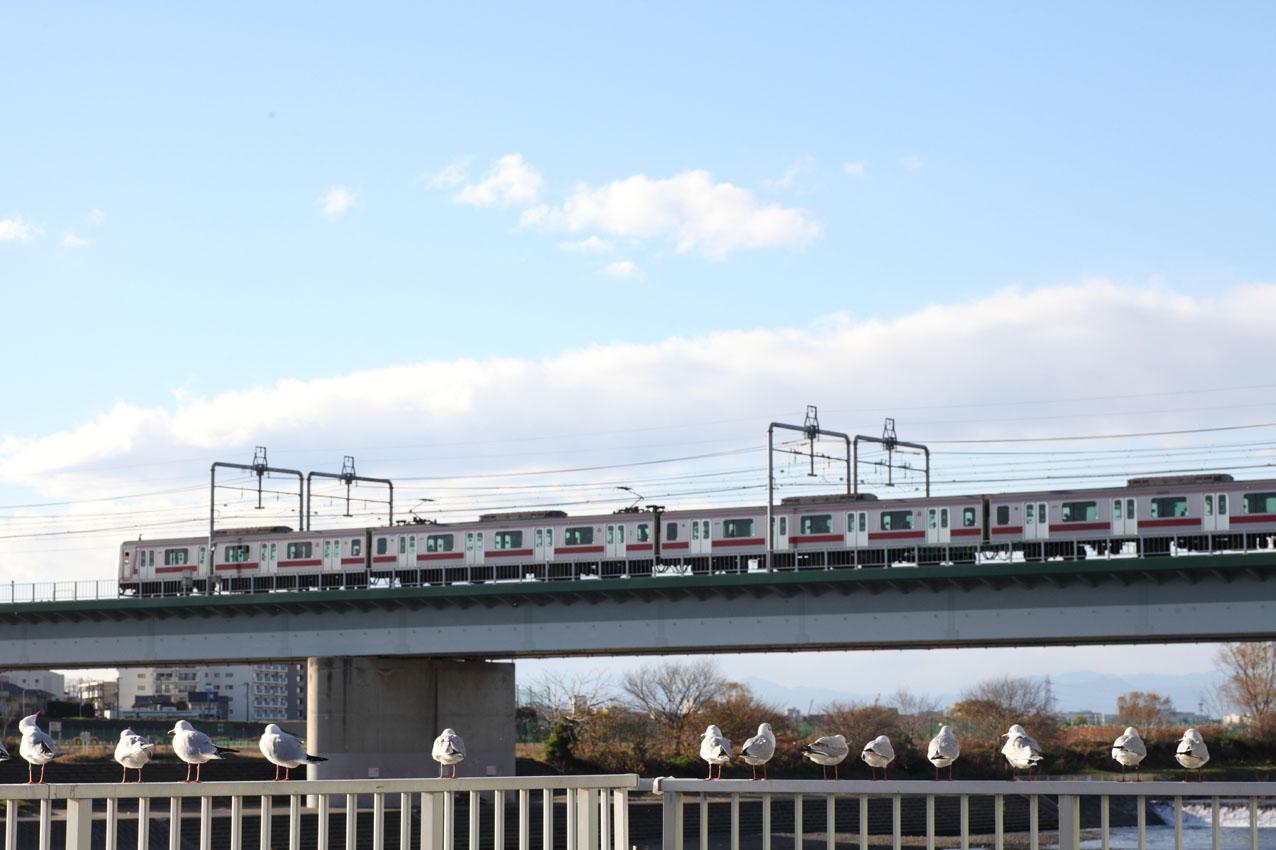丸子橋の下から : 写真の記憶