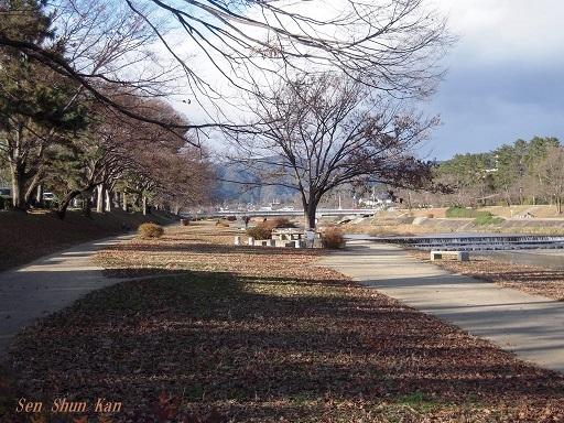 今の賀茂川  2018年12月27日_a0164068_22393342.jpg