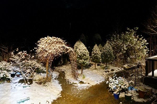 とうとう雪が_e0365880_00363728.jpg