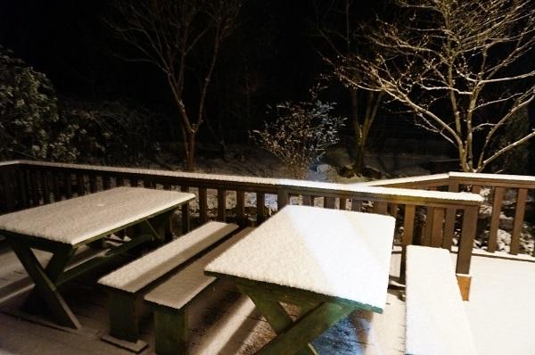 とうとう雪が_e0365880_00365071.jpg