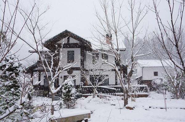 雪が、雪が、_e0365880_21521751.jpg