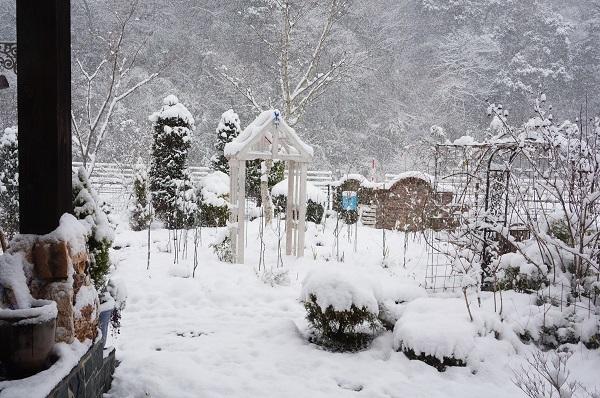 雪が、雪が、_e0365880_21524329.jpg