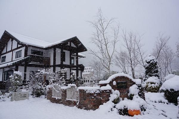 雪が、雪が、_e0365880_21534964.jpg