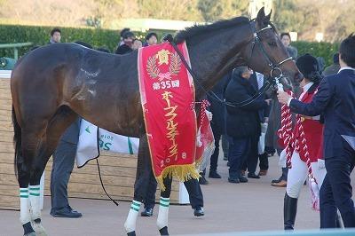 ホープフルSは、良血馬サートゥルナーリアが人気に応え無傷の3連勝でGI初制覇_b0015386_23310919.jpg