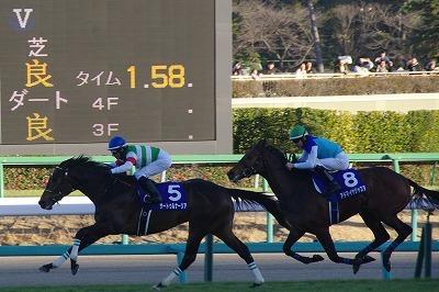 ホープフルSは、良血馬サートゥルナーリアが人気に応え無傷の3連勝でGI初制覇_b0015386_23315964.jpg