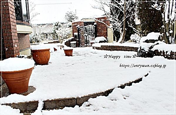 今季初雪とお弁当日記まとめ9月~11月♪_f0348032_17590311.jpg