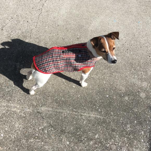seven seas dog raising fleece  jacket 超起毛 フリース ドッグジャケット_d0217958_12322598.jpg