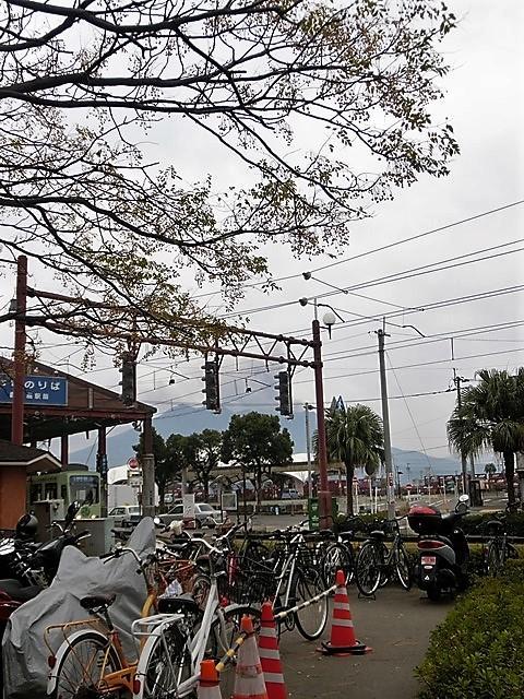 藤田八束の鳥達大好き日記@小鳥が大好き、鳥の魅力、小鳥たちと日本の情景・・・小鳥たちと植物たちの素敵なコラボ写真_d0181492_11473054.jpg