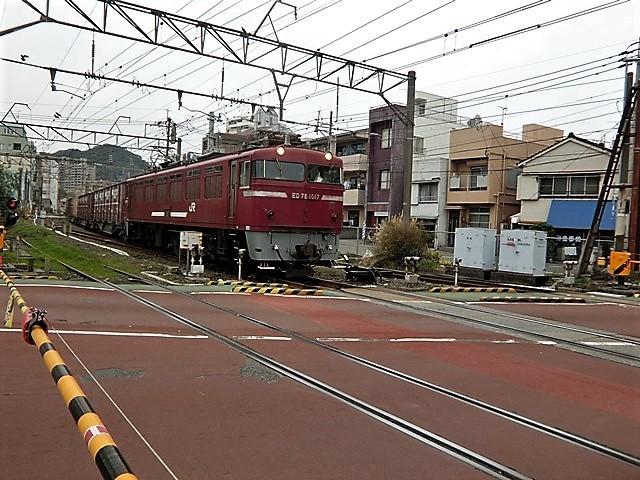 藤田八束の鉄道写真@鹿児島駅貨物列車の写真、長い旅を終えた貨物たちが最南端のこの鹿児島貨物ターミナルに到着_d0181492_11490036.jpg