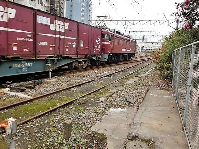 藤田八束の鉄道写真@鹿児島駅貨物列車の写真、長い旅を終えた貨物たちが最南端のこの鹿児島貨物ターミナルに到着_d0181492_11494408.jpg