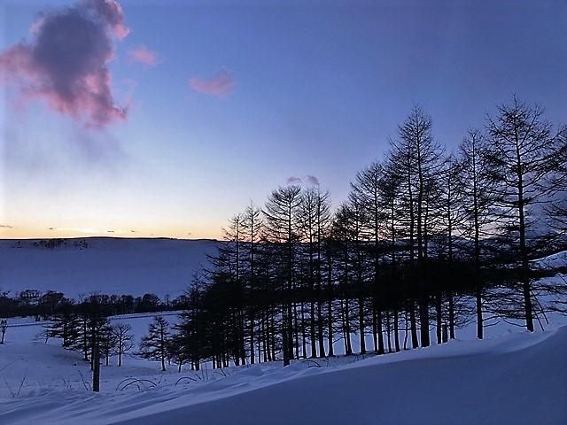藤田八束の日本の美しさ紀行@北海道の大自然をどう観光に結びつけるか、外国からの観光客そして日本人観光客の共通性、橋下徹_d0181492_23252508.jpg