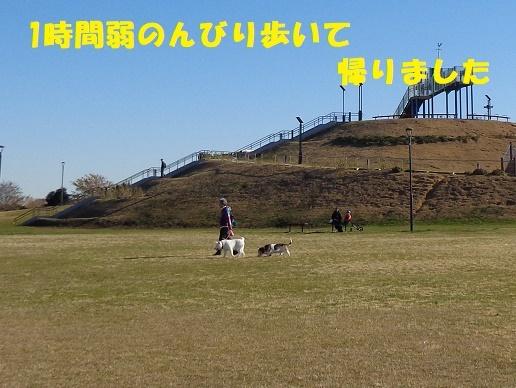 f0121712_00091339.jpg