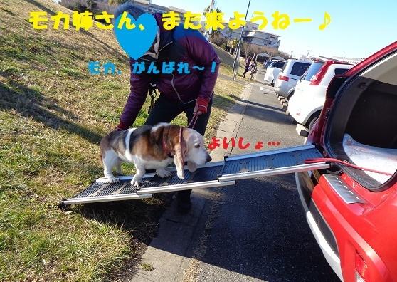 f0121712_00262792.jpg