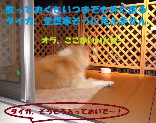 f0121712_22280820.jpg