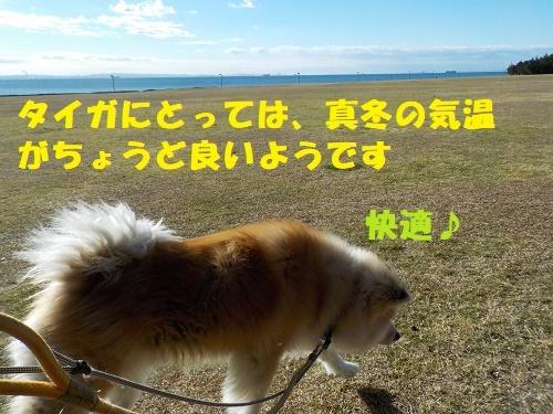 f0121712_22462711.jpg