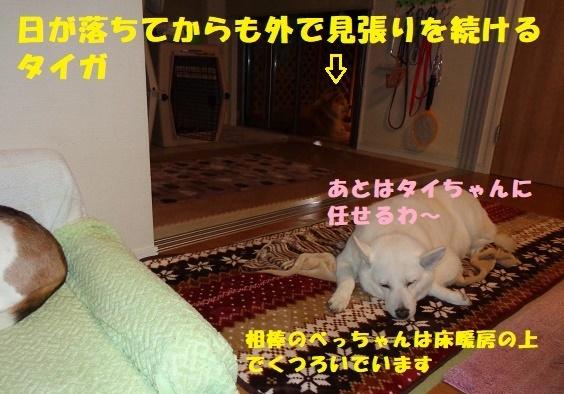 f0121712_23030948.jpg