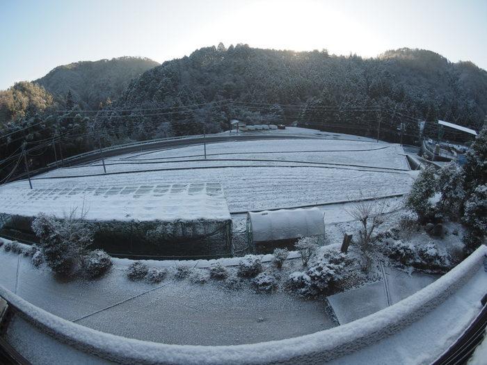 今朝も雪景色_c0116915_23494101.jpg