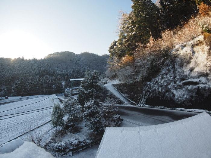 今朝も雪景色_c0116915_23500076.jpg