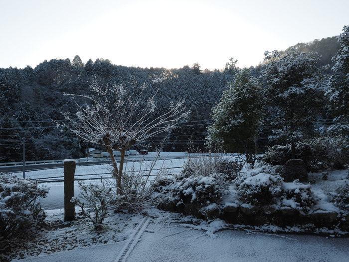 今朝も雪景色_c0116915_23510699.jpg