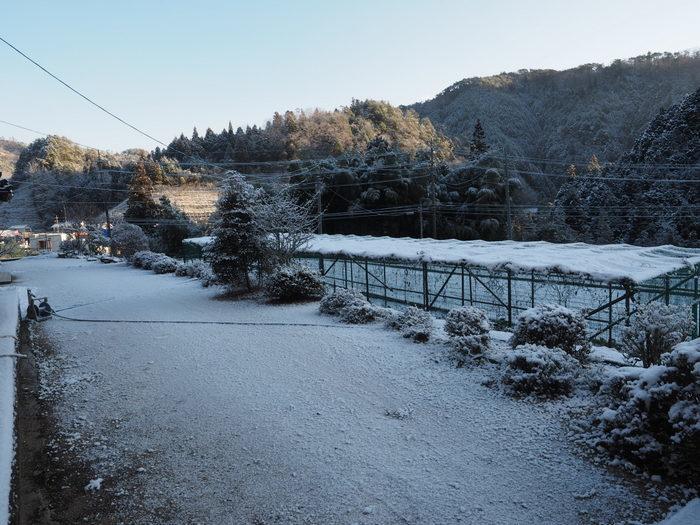 今朝も雪景色_c0116915_23511924.jpg