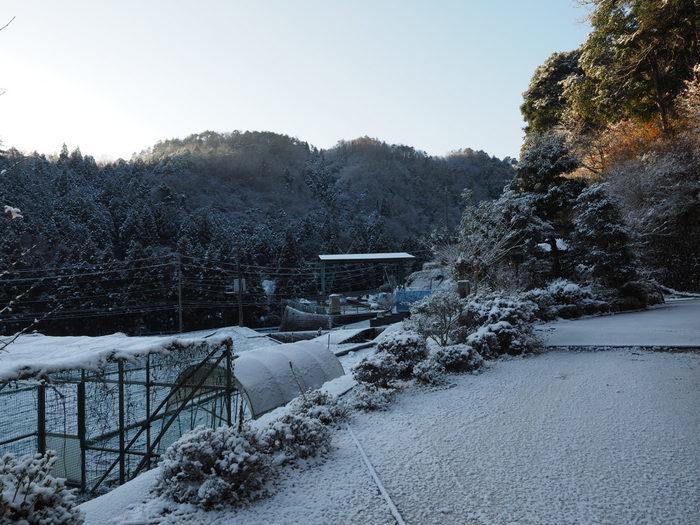 今朝も雪景色_c0116915_23514368.jpg