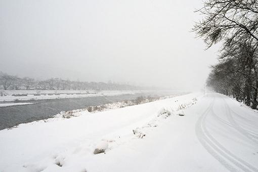 風雪の日_b0259218_06490896.jpg