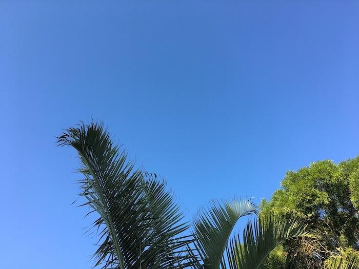 沖縄ぎりぎり旅行5「快晴の朝にはエッグベネディクト」_e0359436_09092706.jpg