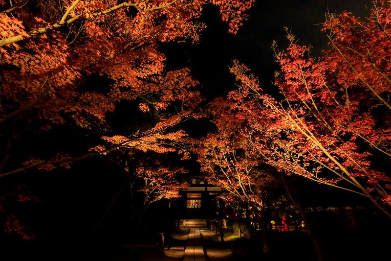 京の紅葉2018 酬恩庵一休寺ライトアップ_f0155048_18232359.jpg