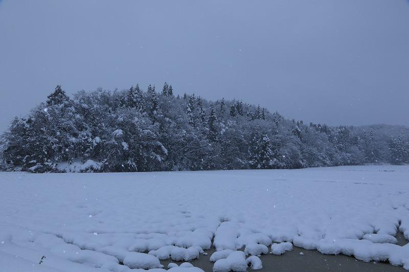 冬景色_c0155950_00110357.jpg
