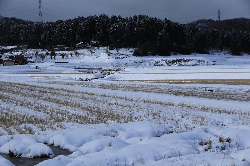 雪景色2_c0155950_00133563.jpg
