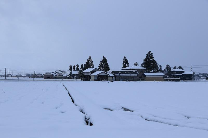 雪景色2_c0155950_00135582.jpg