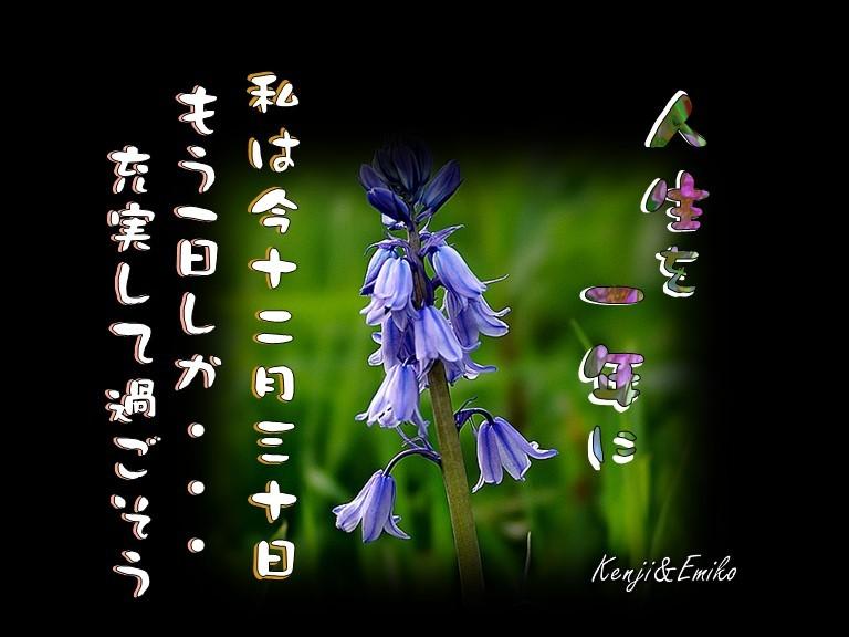 f0214467_10201903.jpg