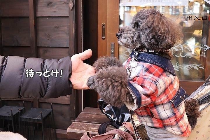 新規開拓!お伊勢さんでしらす丼。【伊勢志摩旅行12】_b0111376_12330370.jpg