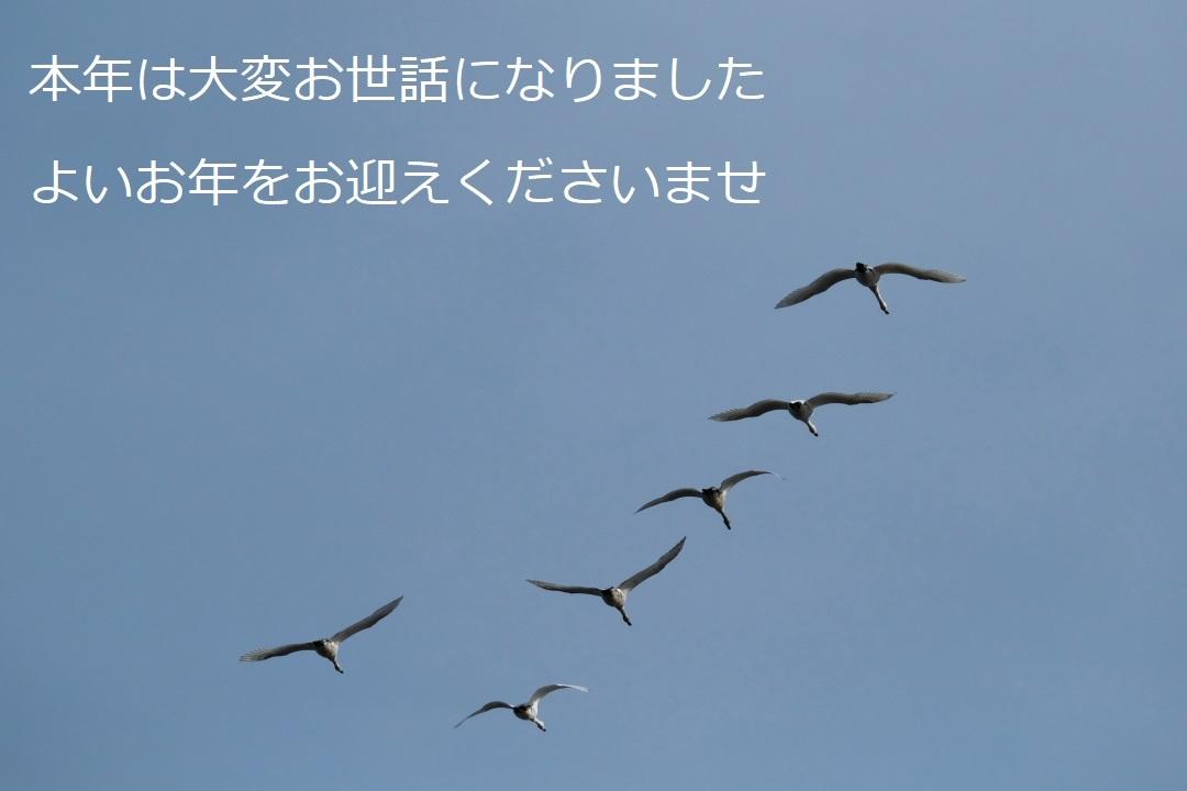 御礼_e0143883_05084892.jpg