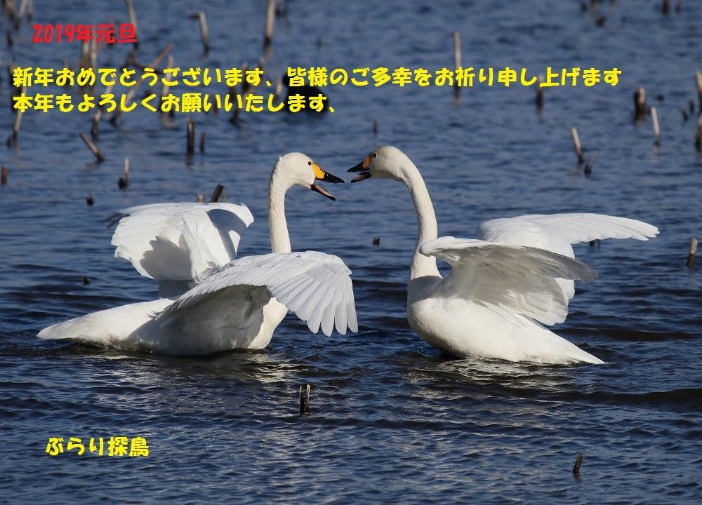 f0305401_17205328.jpg
