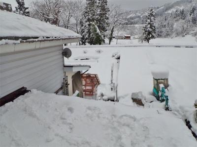 19年シーズン初の雪下ろし!_c0336902_13572185.jpg