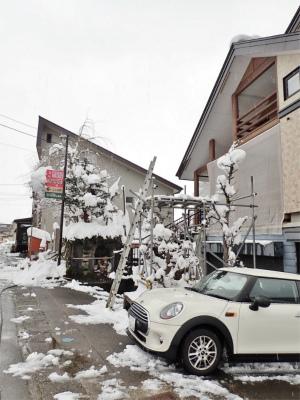 19年シーズン初の雪下ろし!_c0336902_13573174.jpg