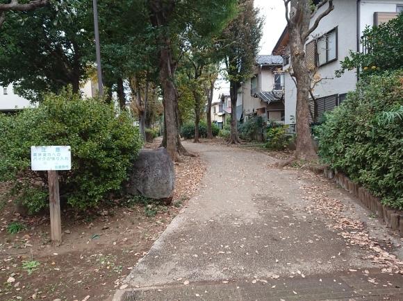 11/22 境浄水場引込線跡地を歩く_b0042308_08021010.jpg