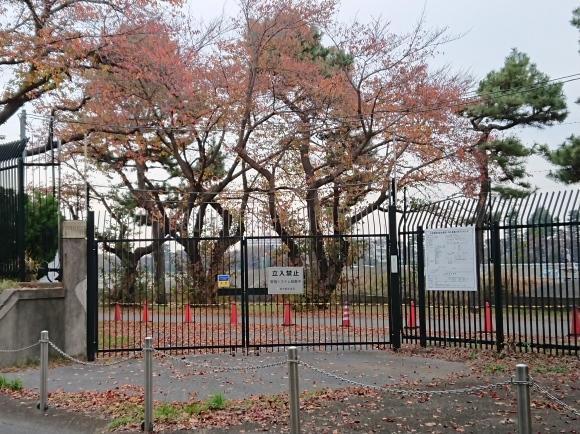 11/22 境浄水場引込線跡地を歩く_b0042308_08152672.jpg
