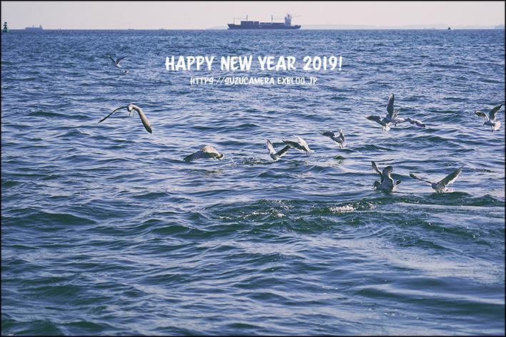 Cheers to 2019 !_f0100215_21342015.jpg