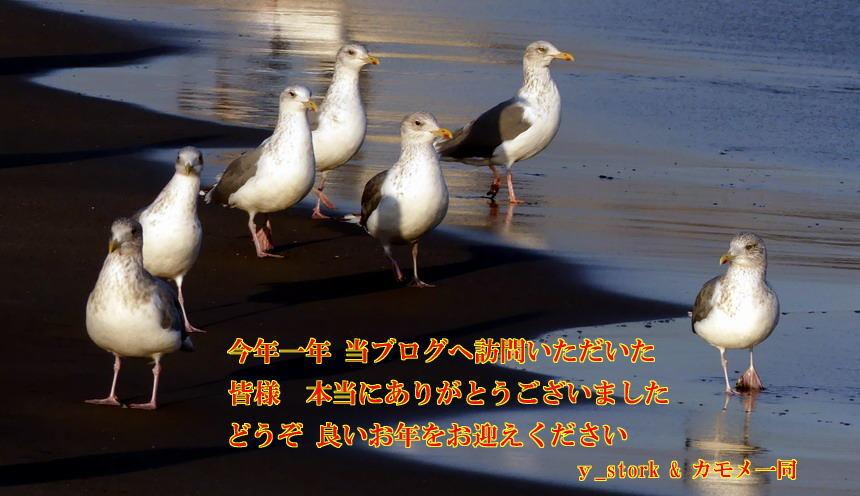 d0039021_16103227.jpg