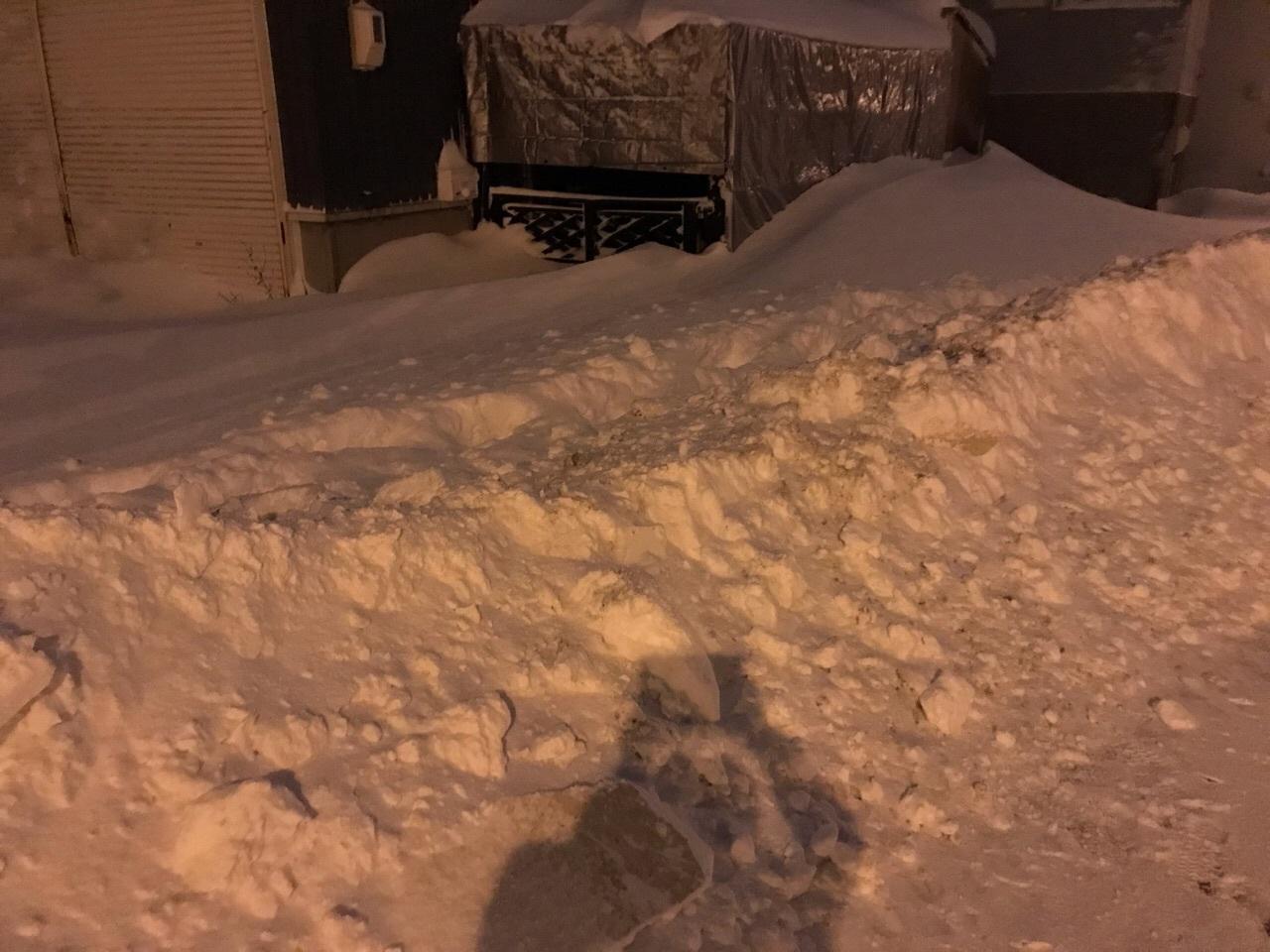 【VANVAN】最大積雪_e0159646_03150445.jpeg