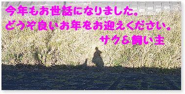 c0006757_23584463.jpg